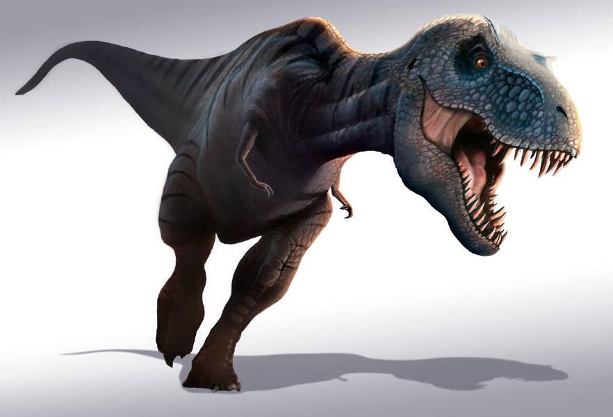 Datiranje i evolucija fosila